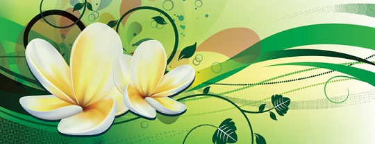 vector-floral-background